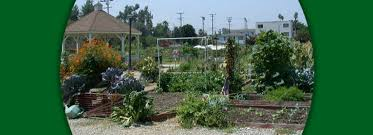 botanical gardens and other organizations garden events