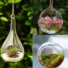 terrarium ball globe shape clear hanging glass vase flower plants terrarium container micro landscape