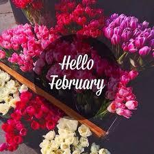hello february tumblr. Fine Hello Hello February Flowers For Tumblr LoveThisPic