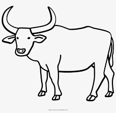 The best selection of royalty free ox draw vector art, graphics and stock illustrations. Buffalo Coloring Page With Water Ultra Pages Ox Drawing 1000x1000 Png Download Pngkit