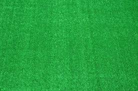 Dean IndoorOutdoor Carpet Green Artificial Grass Turf Area Rug 8 x