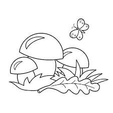 nature coloring book.  Book Coloring Page Outline Of Cartoon Mushrooms Summer Gifts Of Nature  Book For Kids With Nature Book E