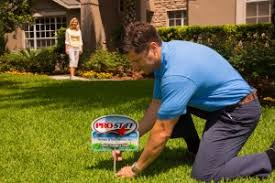 lawn maintenance orlando. Contemporary Orlando ProStaff Termite And Pest Control Provides The Best Lawn Care In Orlando  To Keep Your Excellent Condition While Remaining Pest Free Throughout  Inside Lawn Maintenance ProStaff