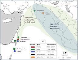 neolithic revolution mattmears d1