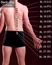 Back Shu Points Acupuncture Acupuncture Benefits Acupressure