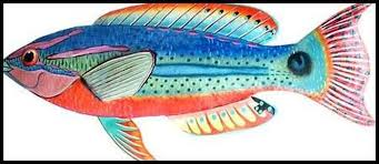 tropical fish wall hanging hand painted metal exquisite wrasse metal tropical fish wall art