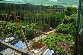 garden it s an italian science