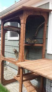 The cat's meow: Check out cat patio styles on the Catio Tour (photos, video)
