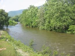 Loyalsock Creek Hatch Chart Diy Guide To Fly Fishing Lycoming Creek In North Central