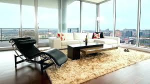 fabulous bedroom rug furry rugs for bedroom rug living room living room best rugs ideas rug bedroom bed bath and beyond