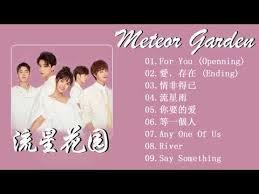 love exist wei qiqi 魏奇奇 meteor