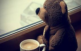 teddy bears coffee cup sitting sad hd wallpapers desktop and mobile images photos
