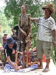 Hasil gambar untuk pemakaman di toraja