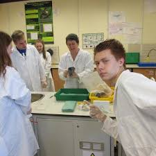 aqa biology unit synoptic essay help biology synoptic essay biology chapeltown academy a level biology is a challenging rewarding course that will