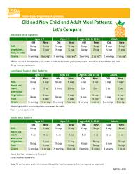 Cacfp New Meal Pattern