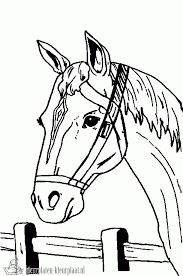 Kleurplaten Paardenhoofd Brekelmansadviesgroep