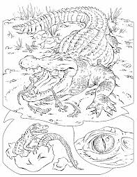 Small Picture Nile Crocodile Coloring page water colour inspirations