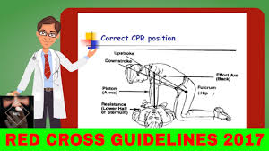 Cpr Chart 2016 Basic Life Support 2015 2016 2017 2018 2019 Adult Red Cross Guidelines Bls How To Cpr