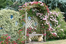 Small Picture Garden Design Garden Design with Cottage Gardens on Pinterest