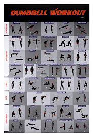 Free Gym Workout Chart Workout Poster Dumbbell Exercise Poster Laminated Free Weight Strength Training Chart Fitness Guide For Home Gym Weightlifting Routine Effective