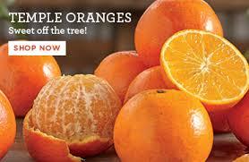 promo temple oranges