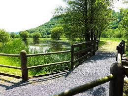 Photo Gallery For Forest View Holidays West Wales