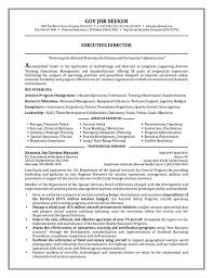 Job Resume Examples Mesmerizing Government Resume Example