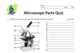 Parts Of The Microscope Microscope Parts Quiz Editable By Tangstar Science Tpt
