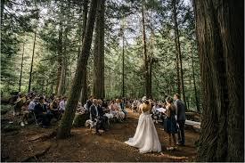 outdoor woods backgrounds. Tallman Outdoor Woods Backgrounds O G