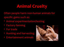 animal cruelty ethics ppt
