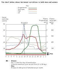 Pin On Health Female Hormones