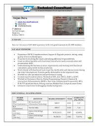 sap resume sample bw sample resumes professional resume sap payroll consultant resume it project manager sap hr payroll consultant resume