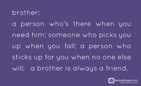 Your Little Brother Loves You Quotes
