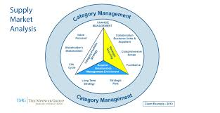 "Market Analysis Category Management Are ""You"" Doing Supply Market Analysis 17"