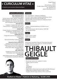 Cv Master 1 Geigle Thibault
