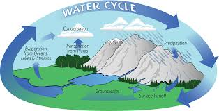 Flow Chart On Water Cycle The Water Cycle Precipitation Education