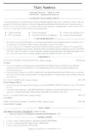 Create Resumes Online Best Professional Resume Builder Service Build For Word Create