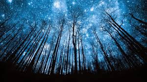 Resultado de imagen de lluvia de estrellas 2017 donde se vera