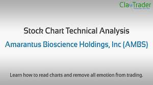 Amarantus Bioscience Holdings Inc Ambs Stock Chart