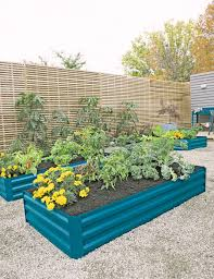corrugated metal garden beds. Beautiful Corrugated Multiple Corrugated Metal Raised Beds In Storm Blue Planted With Flowers  And Vegetables And Corrugated Metal Garden Beds Y