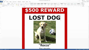 how to make lost dog flyers lost and found sign template lost dog flyer template sign up for