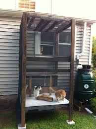 diy outdoor cat enclosure pvc pictures to pin on