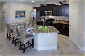 Kitchen Cabinets To Go Cabinets To Go Orlando Florida Home Design Ideas