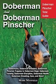 Doberman And Doberman Pinscher Doberman Pinscher Total Guide Dobermans Doberman Breeders Doberman Pinscher Puppies To Doberman Dogs Doberman