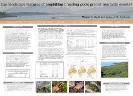 Science Research Posters Society For Conservation Biology Help Designing Posters