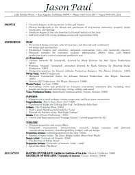 Professional Profile In Resumes Sample Profile In Resume Professional Profile Resume Samples Example