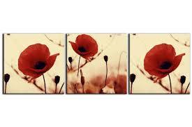 3 canvas prints vintage poppies