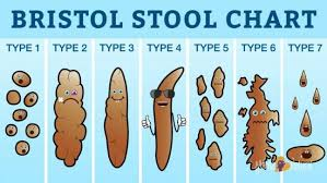Bristol Stool Chart Diarrhea The Bristol Stool Chart Gives The Scoop On Your Poop The Whoot