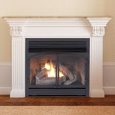best ventless gas fireplace insert reviews vent with logs home pics for ideas 5