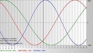 Biorhythm Calculator Actually Very Cool Good To Know
